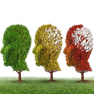 9 วิธีหนีโรคสมองเสื่อม